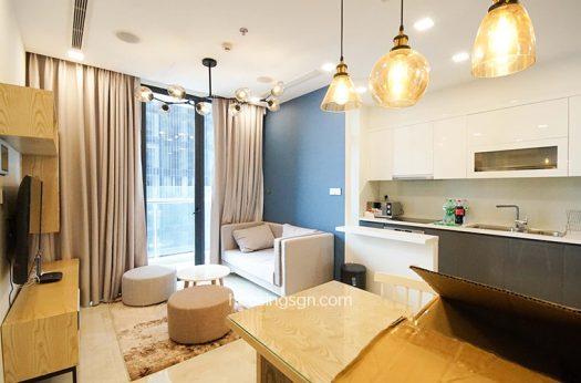 HOUSING SAIGON   UNIQUE APARTMENT FOR RENT
